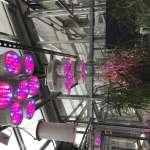 LED Lighting Leeds Uni