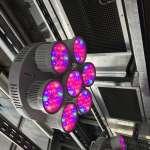 LED Growth Lights
